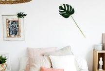 Rainforest inspired home