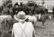"Cowboys / Photos of cowboys I have taken at Cheyenne Frontier Days -- ""the Daddy of em' All"" of rodeos. / by Megan Oteri"