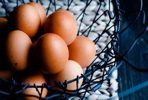 Œufs / Eggs
