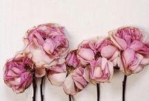 flowerbomb / by Priscila Fileti