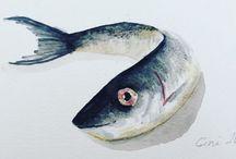 fish album / watercolor painting