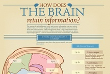 Interesting Infographics / by American Mensa