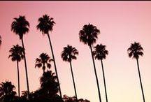 palm love / make me so happy