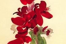Watercolor / My favorite painting medium.