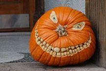 Halloween / by Misty Lembo