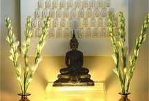 Zen: This Yogi ... / by Sylvie Cha
