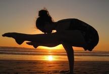 Yoga  / by Sallie Meador