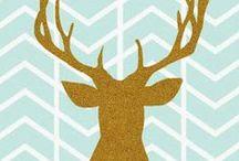 Deer / by Dani Hunter