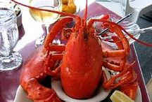 """~ Lobsters ~ / Just finished eating a 21/2 pound lobster, I sure hope they have lobsters in heaven ~ ~ ~~ Its my favorite food to eat!!! ~ We do our Lobster Bakes in a new rubbish can that my wonderful hubby put a spigot on it...It works great! Just be sure to call your local fire dept. to ask if you can do it,  Mine always says, """"you can only if I am invited"""" .~ / by ~ Ziporah Zylona ~"""