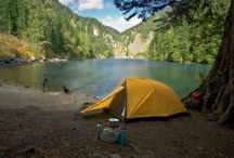 Camping Out / by Stephanie Hoyer
