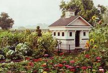 Rosewood Garden / by Charlene C Melanson