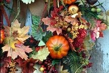 Harvest Celebrations!