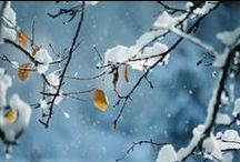 86- L'hiver