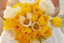 yellow - wedding ideas board / by Pearls Pearls Pearls by Tabs