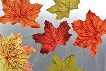 Seasonal~ Fall For It / Fall Season Ideas