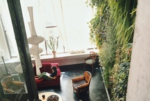 Green Walls, Vertical and Roof Gardens / #green #greenwall #wall #plant #garden #architecture #interiors #vertical #planter #roofgardens  / by Romona Sandon Designs