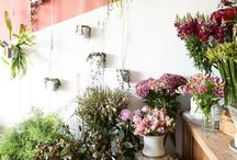 Interiors - Retail / #Interior design and #architecture for #commercial #retail spaces. #florist / by Romona Sandon Designs