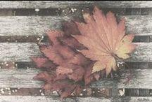 A U T U M N   E Q U I N O X / Harvest, Lammas, Fall Equinox ideas