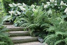 "S H A D E D / ""Gardens are not made by singing 'Oh, how beautiful!' and sitting in the shade.""  ― Rudyard Kipling / by Helen Weis"