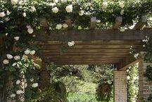 giardino.jardin.garden /  GARDEN & OUTDOOR LIVING ...The earth has music for those who listen~ / by Laura Leonetti
