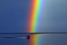 Over the Rainbow! / by Wilma Hamill