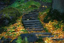 Stairs _- / by Melissa Swenson