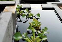 | MINIMAL GIARDINO | / #Contemporary Gardens #Indoor Gardens #Courtyards #Hardscape  / by Laura Leonetti
