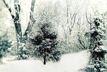 winter love / by Bethan Jayne