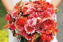Wedding Bouquets / Beautiful bouquets for brides to carry down the aisle from our favorite floral designers. / by Martha Stewart Weddings