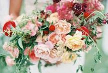 Wedding Bouquets / Beautiful bouquets for brides to carry down the aisle from our favorite floral designers.