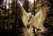 Fantasy - Mythical Creatures / Dragons, Unicorns, Mermaids,