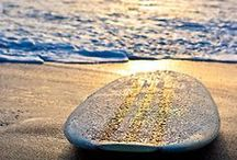 She Sells Seashells by the Seashore / ~Once your feet have touched the sun drenched sand of the seashore... you will never be the same again.~