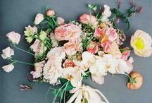 Spring Wedding Colors / Having a spring wedding and not sure what colors to use? Get inspired by these springtime favorites.
