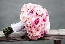 Pink Wedding Bouquets / Browse pink bouquet options in various styles and blooms.