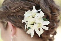 Hair / Stylish Dos for that special day! / by Your Wedding Muse