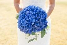 Flower Story: Blue