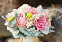 Flower Story: Pastels