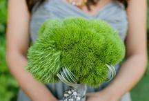 Flower Story: Green