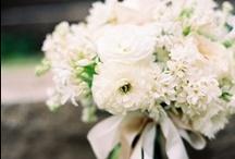 Flower Story: White