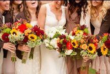 Weddings - Autumn Theme