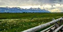 Travel to Jackson Hole, Wyoming / Looking forward to traveling to one of my bucket list destinations in 2015: Jackson Hole and Grand Teton National Park.