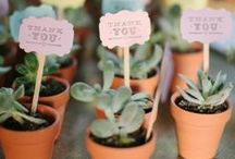 """Wedding Favours / Spoil your guests with great favours to say """"thank you"""" for sharing in your big day!"""