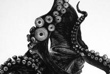 Animals / by Scott Gwynn