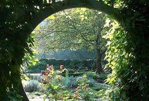 ~ My Secret Garden ~ / Gardening ideas
