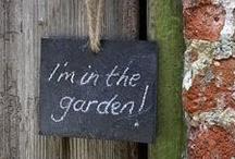 garden/yard / by Dorothy Hamerman
