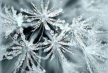 ~ White winter day ~