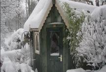 Tiny Homes, Why Do I Love Them So? / by Violet Vaughn
