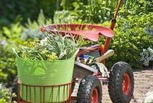 Garden - Tools / by Sandy Hilliard
