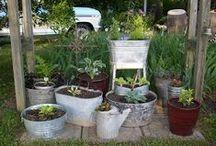 Our Concrete, Iron & Flower Pots / by Sandy Hilliard