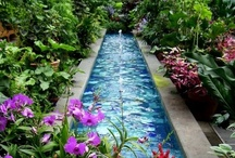 Gardens / So beautiful and relaxing! / by Destiny Flood